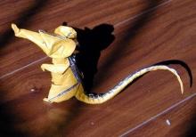 鼠--手揉纸