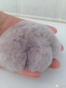羊毛毡猫爪