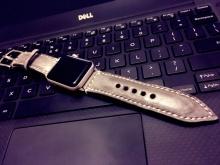 Apple Watch 表带